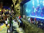 sea-world-ancol_20180715_165935.jpg