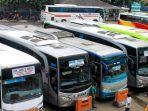 sejumlah-bus-terparkir.jpg