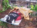 sesosok-mayat-laki-laki-ditemukan-di-hutan-kota-kemayoran.jpg