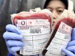stok-darah-pendonor-darah.jpg