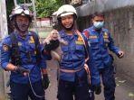 sudin-pkp-jakarta-timur-evakuasi-anak-monyet-di-jalan-kebon-manggis-matraman.jpg