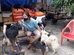 susana-somali-pendiri-pejaten-shelter-tempat-penampungan-bagi-anjing.jpg