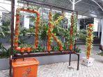 tanaman-hidroponik-ditanam-di-lingkungan-balai-kota-dki-jakarta-1.jpg