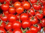 tomat9393.jpg