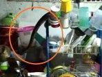 ular-sanca-masuk-dapur.jpg