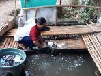 warga-kampung-koceak-kranggan-setu-tangsel-sedang-mengambil-air-dan-mencuci-pakaian.jpg