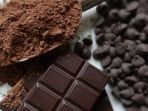 why-dark-chocolate-is-good-for-you-drewdalyon_20180226_194034.jpg