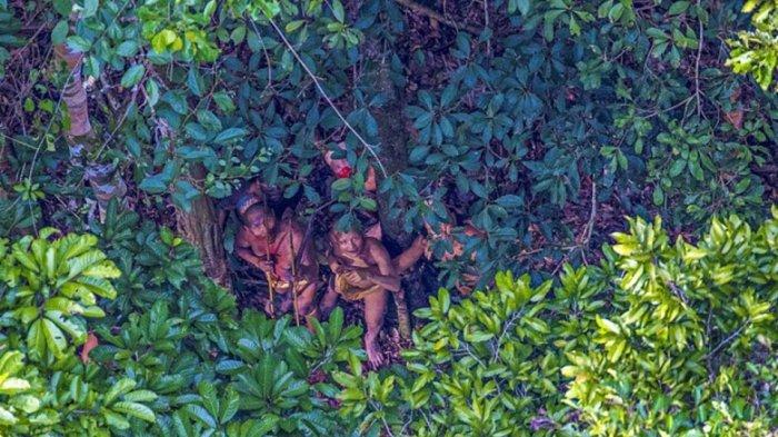Terdeteksi di Wuhan, Peneliti Sebut Hutan Amazon di Brasil Tempat Berpotensi Jadi Sarang Covid-19