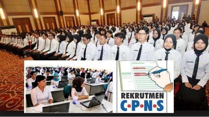 Kabar Gembira Segera Dibuka Pendaftaran CPNS 2019 dan P3K, Catat Jadwal Tahap Pertama Guru dan Dosen