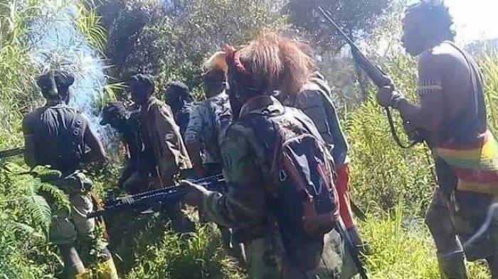 Bagaimana KKB Papua Masuk ke Freeport & Tembaki Karyawan? Dimana Sembunyikan Senjata Laras Panjang?