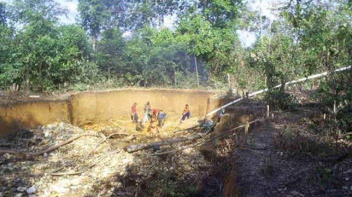 BREAKING NEWS Enam Penambang PETI di Merangin Terkubur Tanah Galian