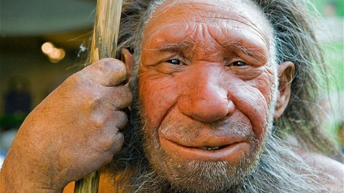 Perubahan Iklim Punya Peran Penting akan Kepunahan Neanderthal