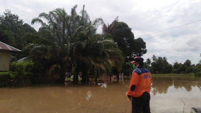 Warga yang Tinggal di DAS Diminta Waspada, Debit Sungai Batang Tembesi Mulai Naik