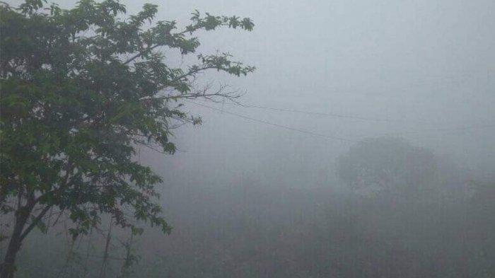 Kabut Asap Kembali Tebal di Kumpeh, Tahura Tanjung Masih Terbakar