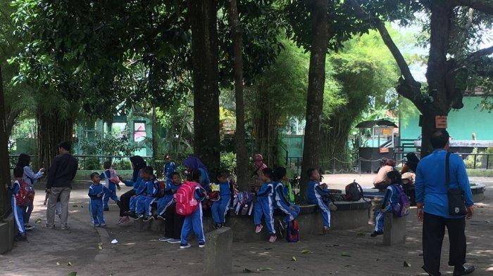 Tidak Hanya Wisata, Taman Rimba Jambi Juga Jadi Tempat Belajar Anak Sekolah