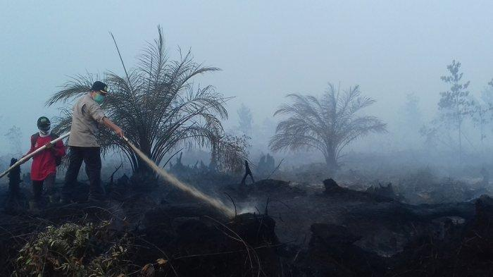 Warga Desa Arang Arang Mulai Terpapar Asap Kebakaran Gambut