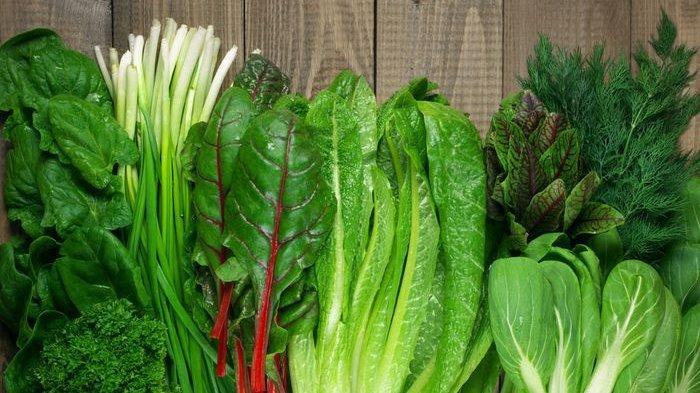 Ilustrasi sayuran hijau