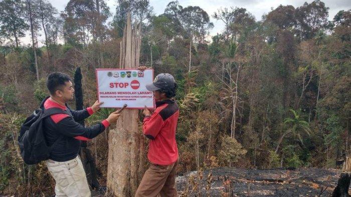 125 Hektar Jelutung Rawa di Muarojambi, Hangus Terbakar Selama Kemarau 2019
