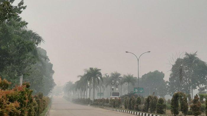 Berbahaya, ISPU di Tebo Capai 810, Sore Hari Kabut Asap Makin Parah