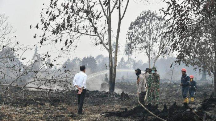 Hari ke Dua di Riau, Presiden Jokowi Tinjau Karhutla dan Ikut Solat Istiska