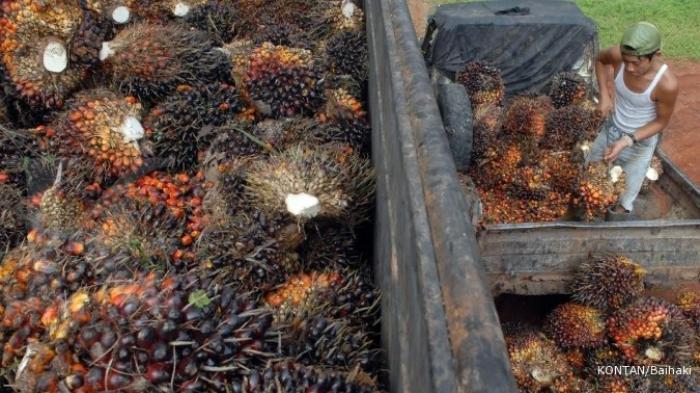 RI-Malaysia Perkuat Perdagangan CPO