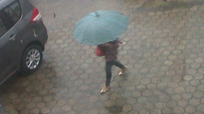 Kabupaten dan Kota di Jambi Memasuki Musim Hujan di Awal September, Kecuali Dua Daerah Ini