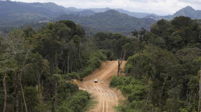 Empat Hari Tersesat di Hutan Perbatasan, 4 Anggota TNI Ini Diselamatkan Sungai Kecil