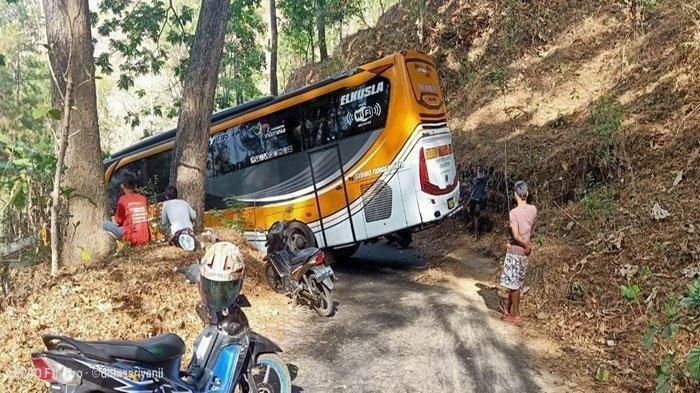 Viral - Misteri Bus Asal Ponorogo Tersesat di Hutan Wonogiri, Terjebak di Tepi Jurang