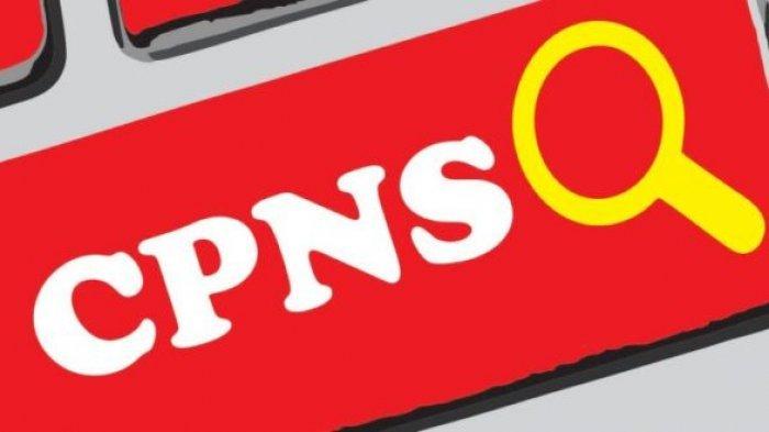 Kabar Terbaru, CPNS 2021 Dipastikan Dibuka Kembali, Ada Jutaan Formasi Jabatan ASN