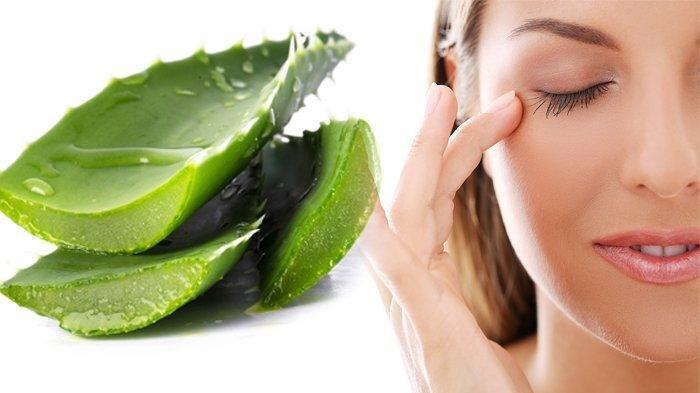 Cara Memutihkan Wajah dengan Bahan Alami - Masker Lidah Buaya, Kunyit, Minyak Zaitun, Madu