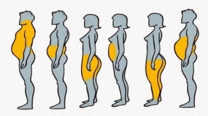 Metode Diet Berdasarkan Jenis Lemak, Ayo Coba Yuk!
