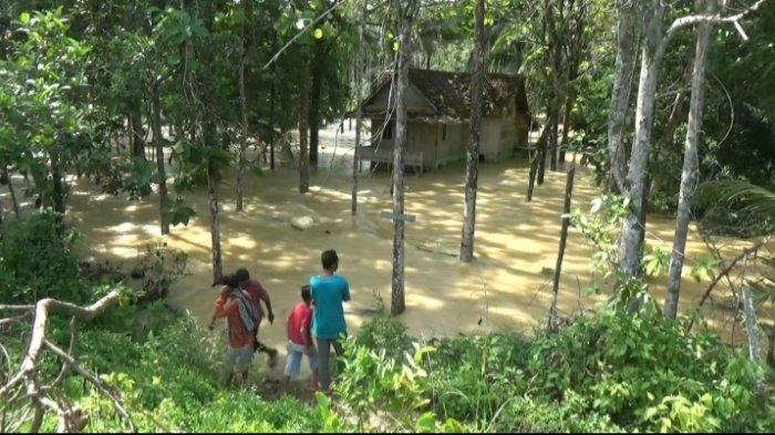 Hanya Bisa Selamatkan Beras, Air Bah Rendam Rumah Sarpin hingga Atap di Desa Mengupeh Tebo