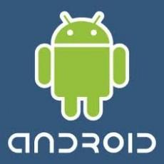 Daftar Smartphone Xiaomi dan Oppo yang Bakal Terima Update Terbaru Android 12 Versi Terbaru