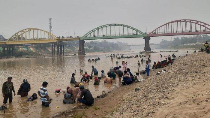 Musim Kemarau, Pendulang Emas di Bawah Jembatan Beatrix Sarolangun Menjamur