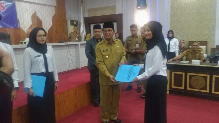 217 CPNS Provinsi Jambi Terima SK, 18 Formasi Masih Kosong, Dari Dokter hingga Guru Multimedia