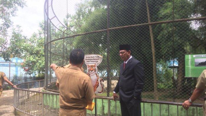 Sekda Datangi Tanam Rimba Jambi, Cari Tahu Penyebab Kematian Singa dan Harimau Sumatera