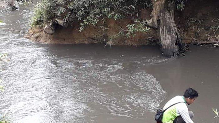 Tiga Sungai Tercemar Akibat Penampungan Limbah Sawit Meluap, PT MSJ Dituntut Tanggung Jawab