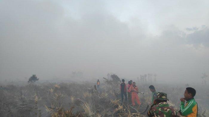Dua Hari Api Membakar Lahan Warga di Wilayah Gambut, BPBD Deteksi 5 Titik Panas di Muarojambi