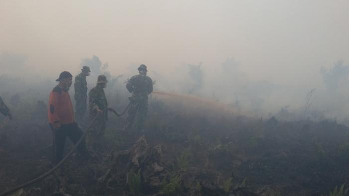 Ternyata Sumber Asap dari Perusahaan Perkebunan Kelapa Sawit