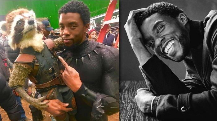 Kenali Penyakit Kanker Usus Besar, Penyakit yang Sebabkan Chadwick Boseman Aktor Black Panther Wafat