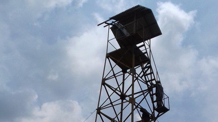 Jelang Musim Kemarau, BMKG Jambi Deteksi 25 Titik Hospot di Provinsi Jambi
