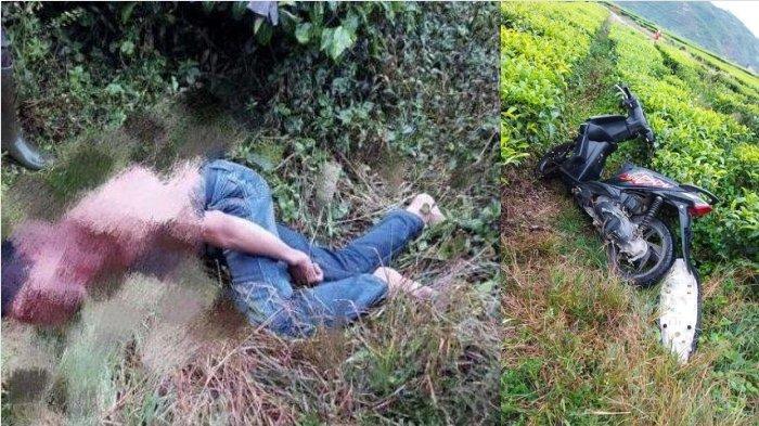 Pedagang Jadi Korban Perampokan, Ditemukan di Kebun Teh Kayu Aro Kerinci, Uang Rp 40 Juta Raib