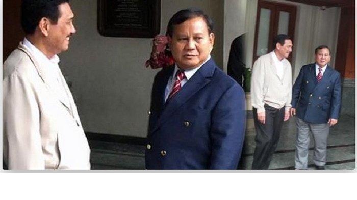 TERBONGKAR, Soal Pertemuan Luhut dengan Prabowo, Pesannya: Politisi Senior Jangan Bikin Panas