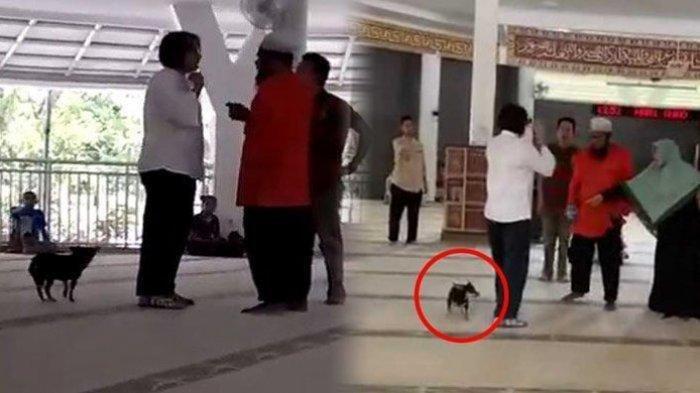 Polisi Bongkar Fakta Sosok Wanita Membawa Anjing ke Masjid, Penyebab Masalah hingga Videonya Viral!
