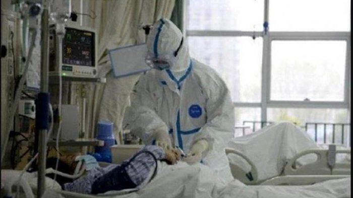 Jauhi Obat Ibuprofen Jika Alami Gejala Virus Corona, Juru Bicara WHO: Lebih Baik Gunakan Paracetamol