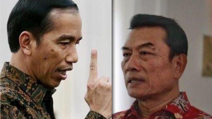 Pengakuan Blak-blakan Denny Siregar soal Buzzer Istana dan Buzzer 'Pelindung' Jokowi? Ini Faktanya