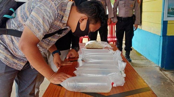 Anggota melihat 94.500 ekor baby lobster yang berhasil digagalkan anggota Polair Polres Tanjabtim