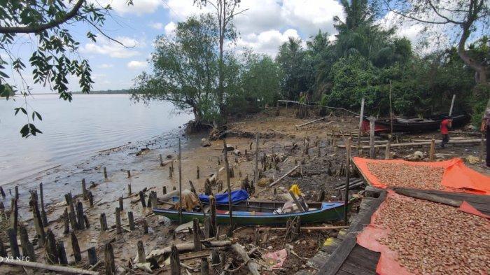 Abrasi Ancam Warga Desa Teluk Majelis, Belum Ada Solusi Untuk Mengatasi Hal Ini