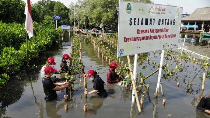 Info Honda Jambi, AHM Lestarikan Keanekaragaman Hayati di Jabar