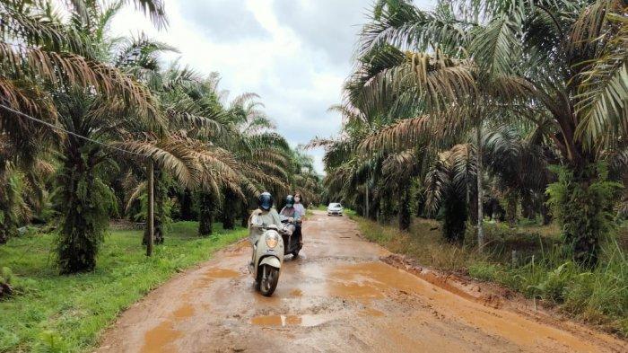 Jalan Menuju Kegiatan PWN 2021 Bakal Diperbaiki, Pemkab Batanghari Sediakan Anggaran Rp 13,6 Miliar
